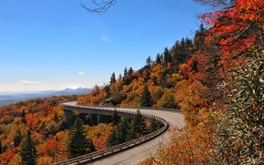 autumn, bridge, North Carolina, derevya.peyzazh, Blue Ridge Parkway Linn Cove Viaduct