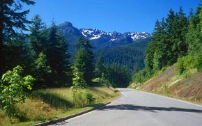 estrada, Montanhas, Washington, ?rvores, Nat Parque Ol?mpico, paisagem
