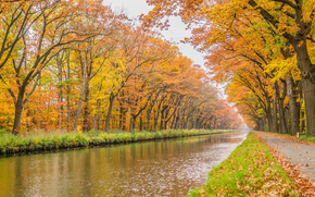 road, trees, channel, landscape, autumn