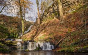 водопад, речка, холмы, природа, осень