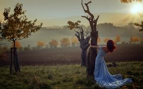 木, 秋, ドレス, 日没, 女の子, 気分