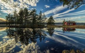 Ringerike, Noruega, lago, reflex?o, casa, Nuvens, ?rvores