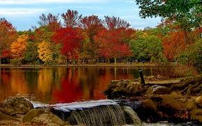 Babilônia, Nova Iorque, Belmont Lake State Park, Belmont Lake, parque, outono, lago, árvores