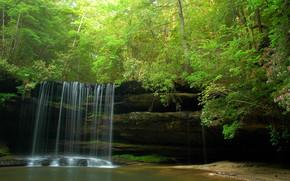 foresta, alberi, Rocce, cascata, natura