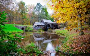Mabry Mill, Virginia, autunno, mulino, fiume, alberi, reyzazh