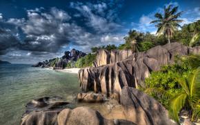 Seychelles, Palme, mare, puntellare, Rocce, pietre, paesaggio