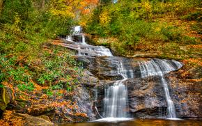 秋, 岩, 滝, 森, 木, 自然