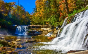 autumn, small river, waterfalls, forest, trees, landscape