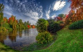 Middle Lake Sheffield Park, lake, autumn, trees, landscape