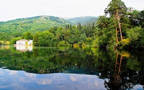 湖, 山, 森林, 家, 树, 景观