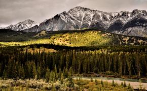 山脈, 川, 木, 風景