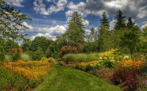 парк, сад, деревья, дорога, цветы, пейзаж