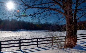 зима, закат, лес, деревья, поле, забор, пейзаж