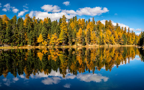Lake Champfer, Upper Engadine, Canton of Grisons, Graubünden, Switzerland, Lake Champfer, Upper Engadine, Canton Graubünden, Switzerland, autumn, lake, reflection, forest, trees