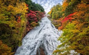 Yudaki Waterfall, Japan, autumn, waterfall, trees, landscape