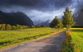 domaine, Montagnes, route, arbres, NUAGES, paysage