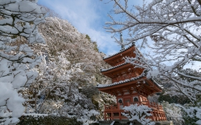 Mimuroto-ji Temple, Kyoto, japan, Kyoto, Japan, temple, pagoda, winter, snow, trees, BRANCH