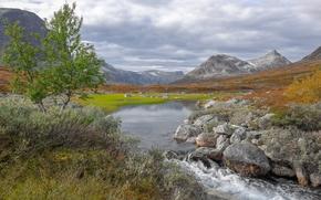 Montagne, fiume, pietre, alberi, paesaggio