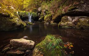 cascada, Rocas, estanque, árboles, naturaleza