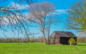 field, home, trees, landscape