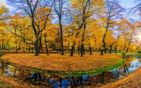осень, парк, канал, речка, деревья, пейзаж, панорама
