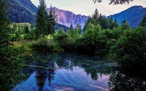 озеро, горы, мост, деревья, пейзаж
