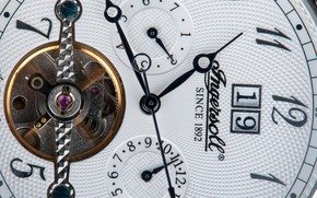 Ingersoll Automatic Watch, watch, time