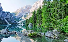 lac, Montagnes, arbres, paysage
