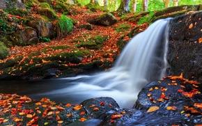 otoño, cascada, árboles, piedras, naturaleza