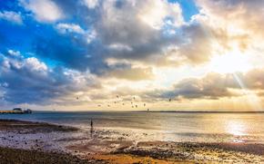 puesta del sol, mar, costa, PEARCE, paisaje