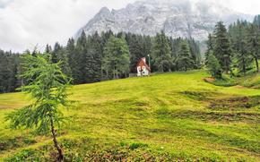 field, Hills, Mountains, cabin, trees, landscape