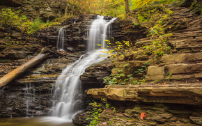 autunno, cascata, Rocce, natura