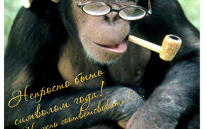 Calendar for 2016, Do not just be a symbol of the year, monkey, Monkey symbol 2016, Calendar 2016, calendar with a monkey
