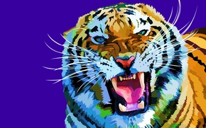 tiger, vector, art