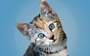 gatito, vector, arte