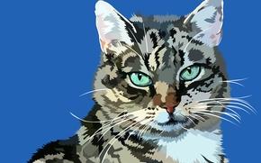 COTE, kot, wektor, sztuka