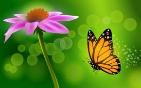 mariposa, flor, vector