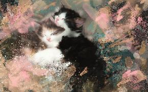 Kittens, kids, sleeping, dream, TEXTURE