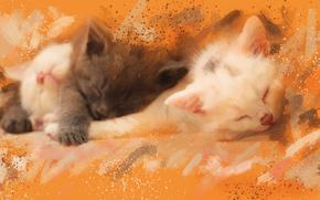 Kätzchen, Kinder, schlafend, träumen, Trinity, Trio, BESCHAFFENHEITS, PHOTOART