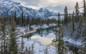 Canadian Rockies, Jasper National Park, Alberta, Canada, Canadian Rockies, Jasper National Park, Alberta, Canada, winter, lake, Mountains, forest, trees
