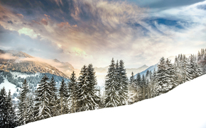 Gstaad, Switzerland, Alps, Gstaad, Switzerland, Alps, winter, snow, Mountains, forest, trees, spruce