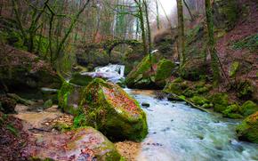 autunno, fiume, foresta, ponte, alberi, pietre, paesaggio