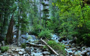 лес, деревья, речка, водопад, камни, природа