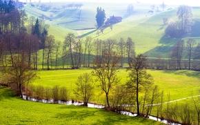 Альтбюрон, Швейцария, холмы, поля, речка, деревья, пейзаж