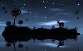 nuit, île, Étoile, cerf, oiseaux, arbres