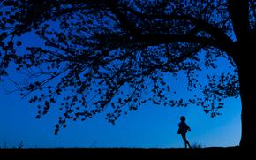 noc, sylwetki, drzewo, dziewczyna