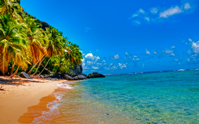 Playa Fronton, Samana, The Dominican Republic, sea, Palms, landscape