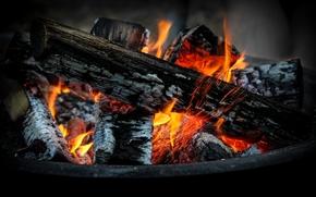 BONFIRE, firewood, coals, fire, flame