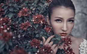 азиатка, лицо, взгляд, макияж, бугенвиллия, цветки, ветки