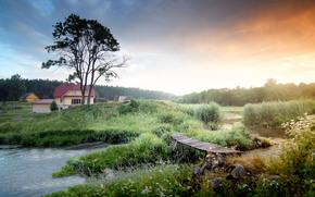 tramonto, fiume, ponte, albero, domestico, paesaggio